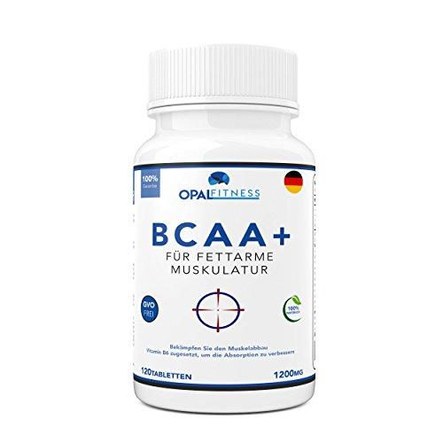 BCAA Tabletten im BCAA Fakten-Test 2018