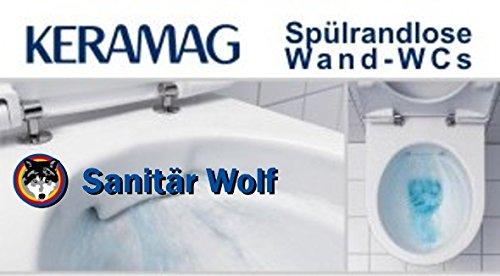 Keramag Renova Nr. 1 im Spülrandloses WC Fakten-Test 2017